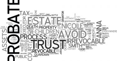 WHY A WILL IS NOT ENOUGH TO SAVE ANNA NICOLE SMITH S BABY DAUGHTER TEXT WORD CLOUD CONCEPT